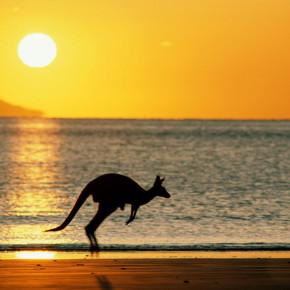 Жизнь и работа в Австралии